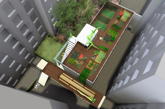 An urban garden in a residential courtyard.